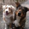 Reika&Lotte