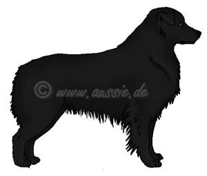 b-Locus-einfarbig-schwarz-solid-black