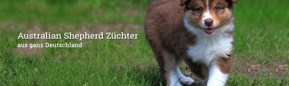 Australian Shepherd Züchter